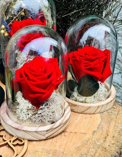 """Rose éternelle """"rose"""" petite cloche Les Bouquetiers - fleuriste Brie-Comte-Rober"""